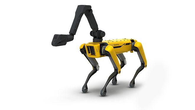 Satış fiyatı belli oldu; robot köpek Spot artık herkese açık